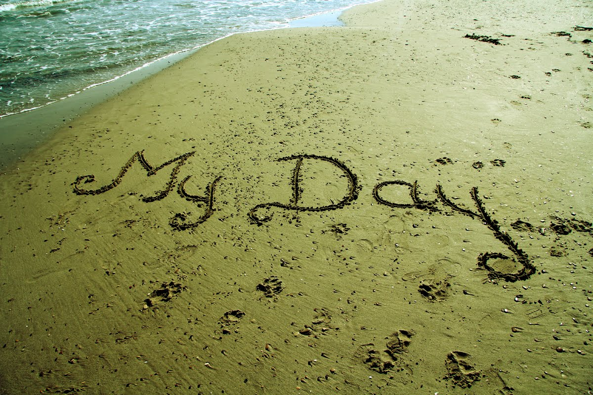 my-day